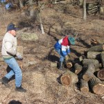 Volunteers cleaning up cut wood at Donald Rock